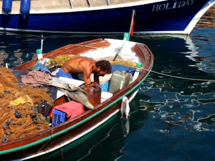 Fischer in Marmaris - Yachthafen Marmaris