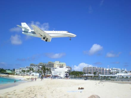 Landsanflug - Maho Beach