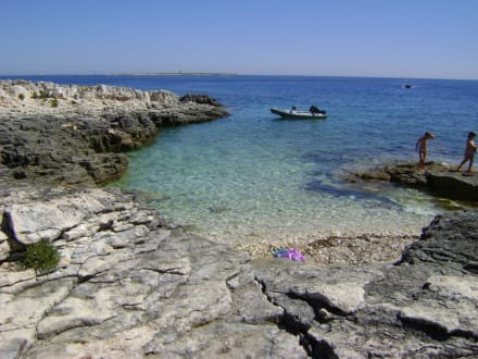 Beach/Coast/Harbor - Ceja Island