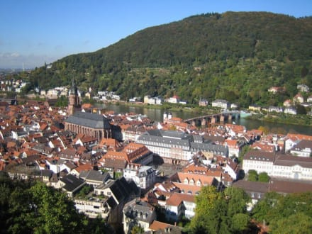 Ausblick - Schloss Heidelberg