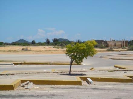 Vor der Laguna Restinga - La Restinga