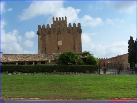 Torre de Canyamel - Torre de Canyamel