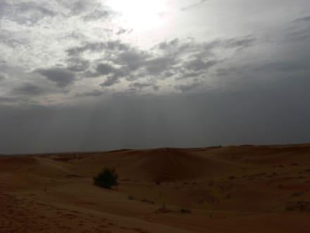 Wüste - Wüstentour Dubai