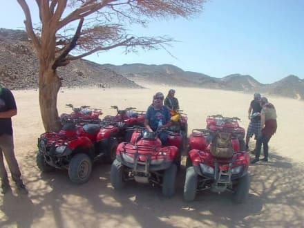 Mitten in der Wüste  - Susi in Ägypten - Ausflüge