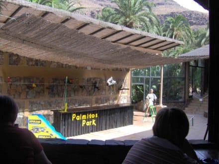 Palmitos Park - Touren & Ausflüge