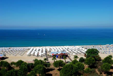 Beach 7 - Hotel Grand Zaman Beach