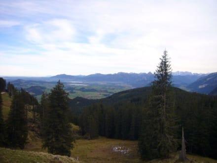 Panorma II - Alpspitz