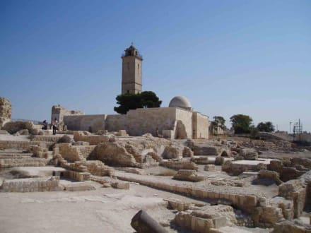 Zitadelle in Aleppo - Zitadele von Aleppo