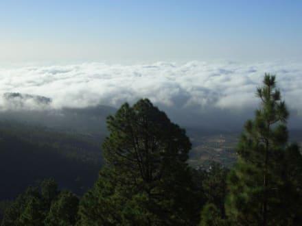 Ausflug zum Teide - Teide Nationalpark