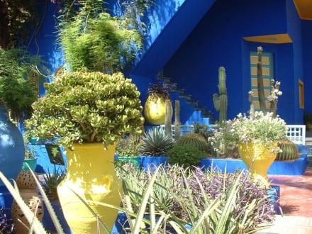 Traumgarten - Garten Majorelle