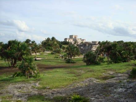 Blick über das Gelände - Ruinen von Tulum