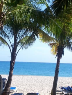 Traumstrand - Hotel Tropical Clubs Cabarete