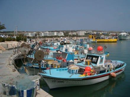 Hafen in Ayia Napa - Fischereihafen Ayia Napa/Agia Napa