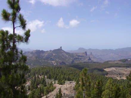 Einfach nur schön - Bergwelt