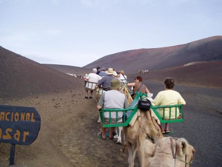 Lanzarote: Timanfaya Nationalpark - Nationalpark Timanfaya (Feuerberge)