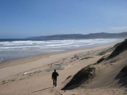 Auf dem Weg zum Strand - Wilderness Beach