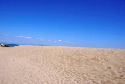 Sand pur vom Feinsten - Strand Bibione