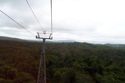 Blick aus der Skyrail - Skyrail Rainforest Cableway