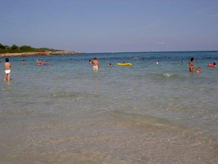 Strand in der Nähe unseres Hotels Badia Park - Strand Sa Coma
