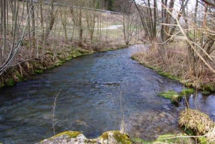 Bachzulauf Forellenaufzucht - Wasserkraftwerk