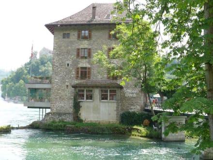 Das Restaurant am Rheinfall - Rheinfall von Schaffhausen