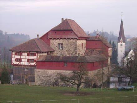 Burg/Palast/Schloss/Ruine - Wasserschloss Hagenwil
