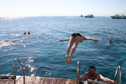 Sprung ins Rote Meer - Schnorcheln Hurghada