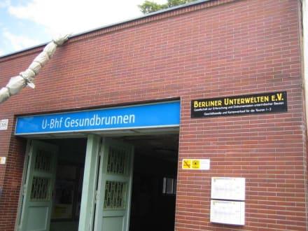 Verein Berliner Unterwelten - Berliner Unterwelten
