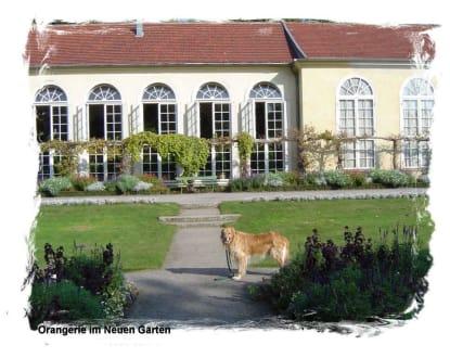 Im Neuen Garten - Schlosspark Sanssouci