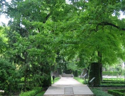 Real Jardin Botánico - Königlicher Botanischer Garten Madrid