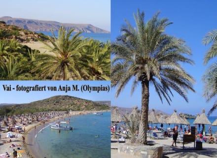 Palmenstrand von Vai im Osten Kretas - Kretas äußerster Osten