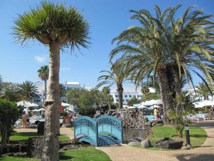 Gartenanlage - Seaside Hotel Los Jameos Playa
