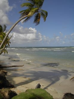 Playa Bonita - Playa Bonita