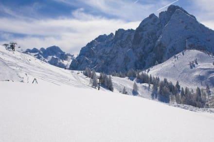 Skigebiet Dachstein-West - Dachstein West