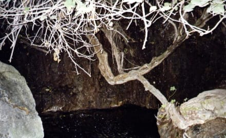 Akamas Halbinsel Bad der Aphrodite - Bad der Aphrodite