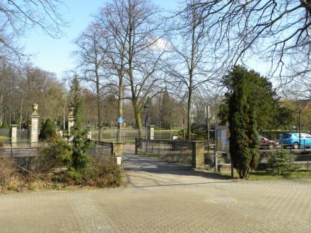 Französischer Garten Celle Bild Französischer Garten In Celle