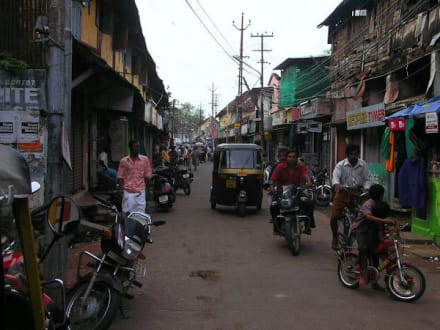 Stadt/Ort - Kochi