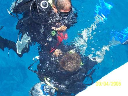 Taucherlebnis - Adventurer-Diving (geschlossen)
