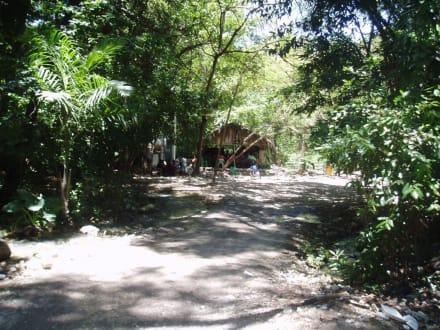 Stopp zwischen S. Domingo und dem Lago Enriquillo - Ausflüge & Touren