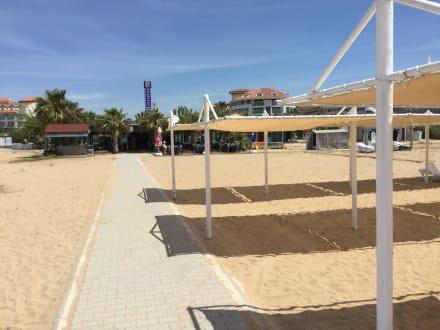 Neues Sonnendach  - Neumanns Park Restaurant