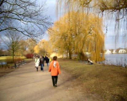 An einem sonnigen Tag in an der Alster in Hamburg - Alstervergnügen