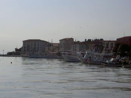Hafen von Porec - Hafen Porec
