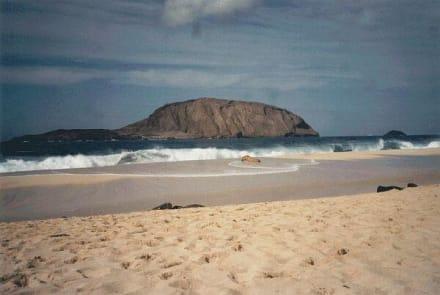 Las Conchas - Playa de las Conchas