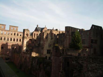 Schlossruine - Schloss Heidelberg