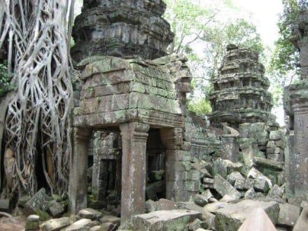 Angkor / Ta Prohm Tempel - Tempel Ta Prohm