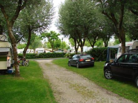 camping stellpl tze bild camping marina di venezia in. Black Bedroom Furniture Sets. Home Design Ideas