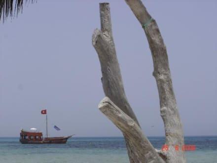 Inselausflug Kuriat - Insel Kuriat