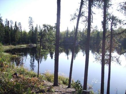 Campground am Halfway Lake - Halfway Lake Provincial Park