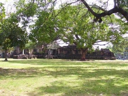 Tempelwiese - Phimai