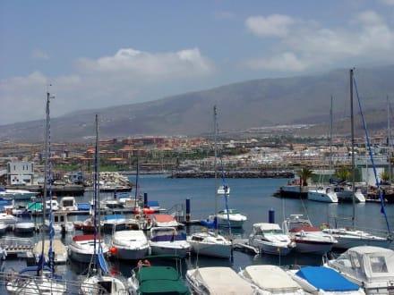 Panorama Puerto Colon Playa de las Americas - Yachthafen Puerto Colón